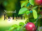 Normal (original version)